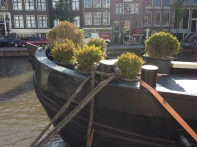 houseboat topiaries