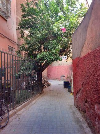 marrakech souk quiet side street