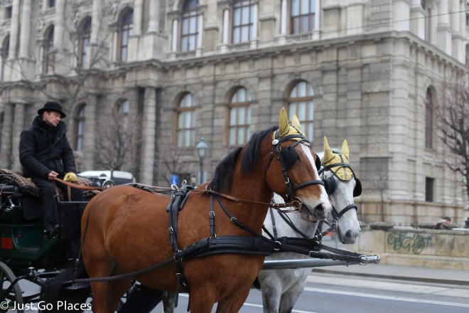 Vienna horse and carriage