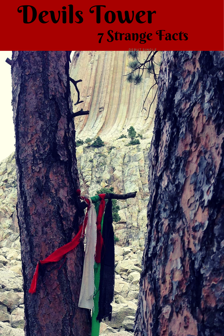 Native American Prayers tied to trees at Devils Tower