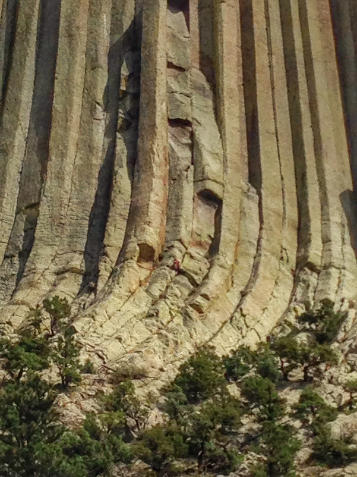 Devils Tower Close up