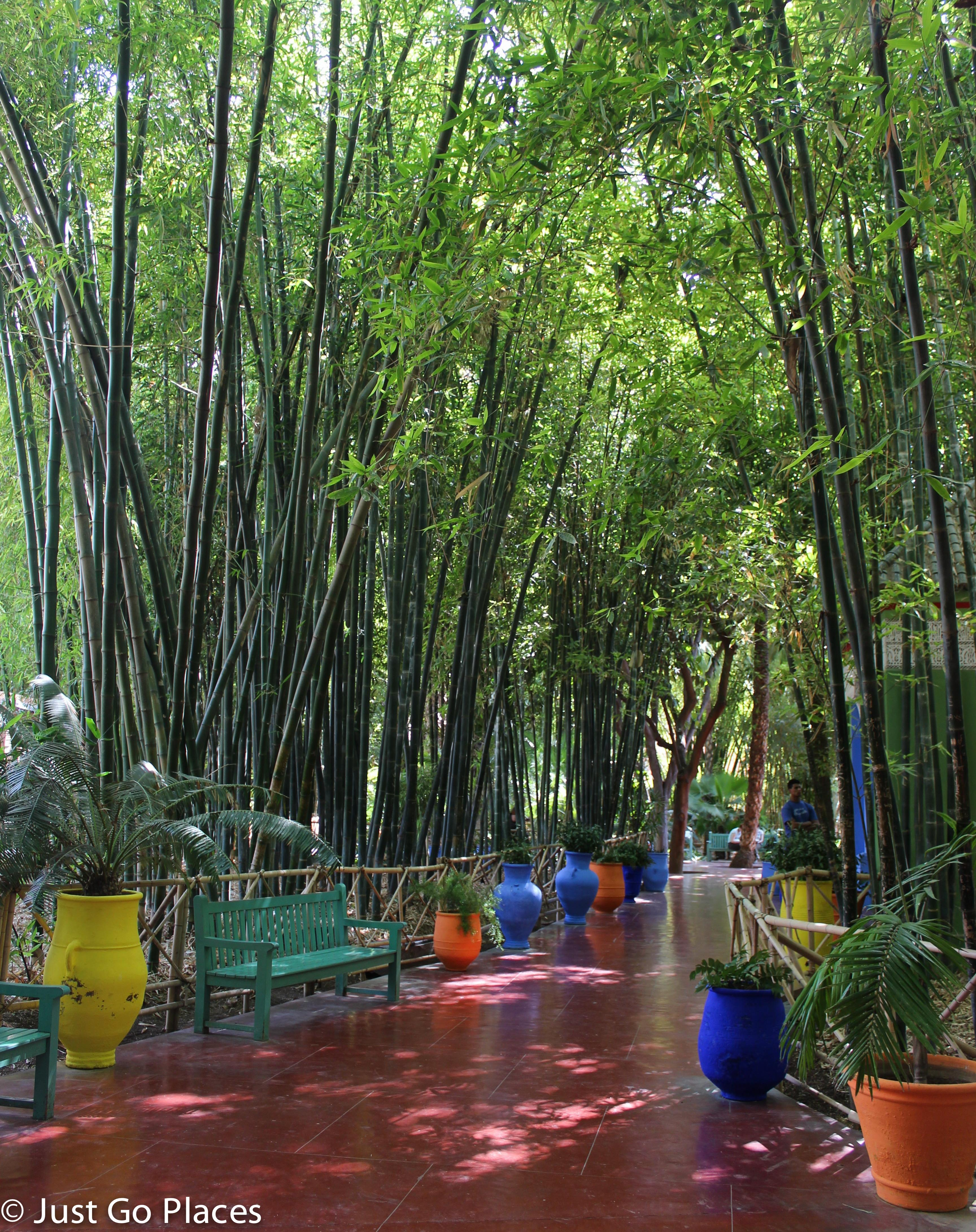 Fall in Love With Jardin Majorelle
