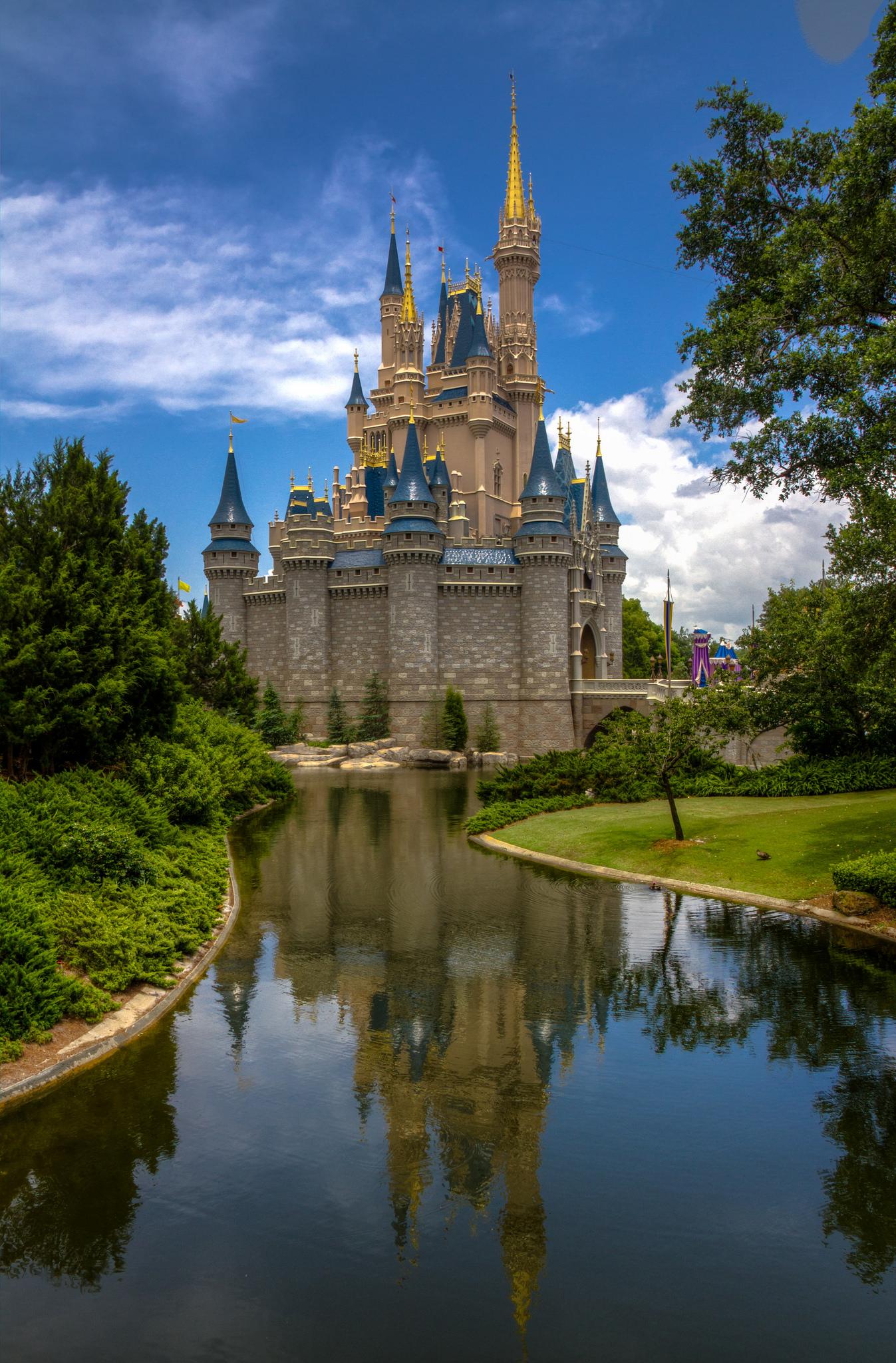 Disney World Castle