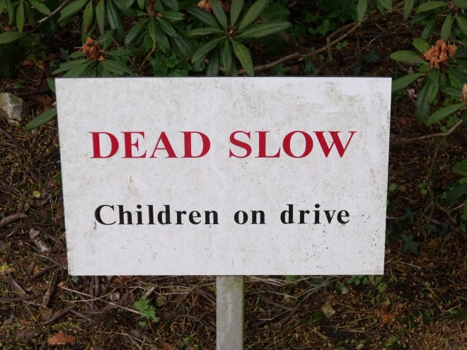 dead slow children