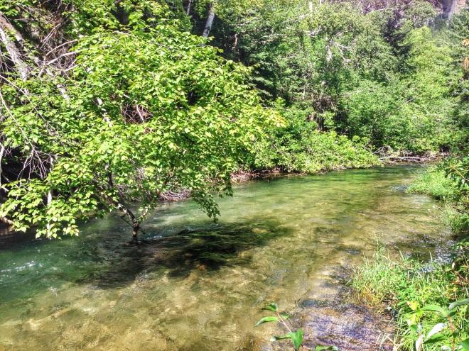 A stream near Spearfish South Dakota