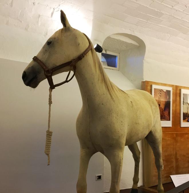 Castle in Pubol white horse