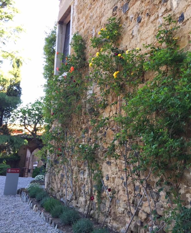 Gala Dali castle climbing roses