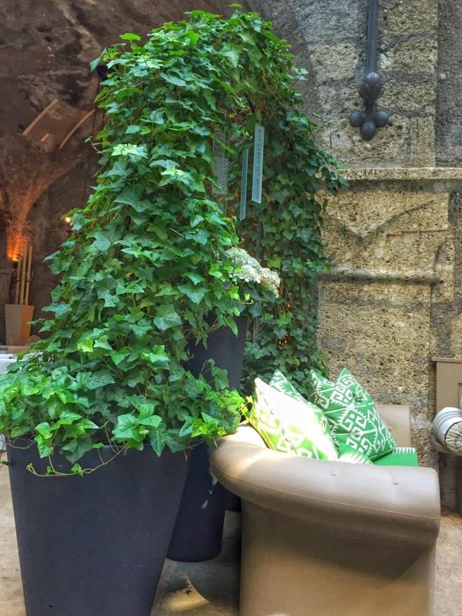 st peter stiftskeller courtyard