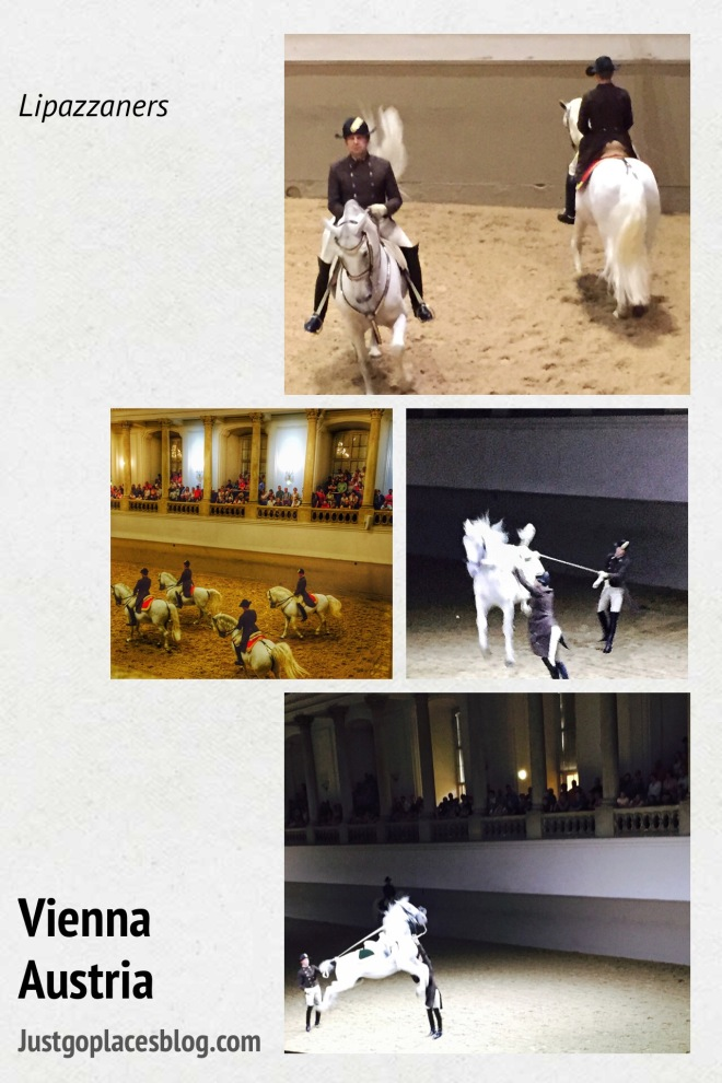 The Vienna Spanish Riding School horses doing their display