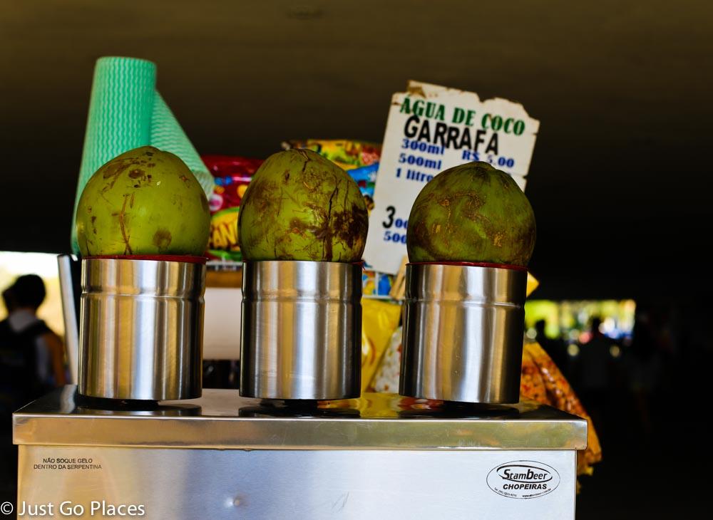 coconut drinks ibirapuera park sao paulo brasil