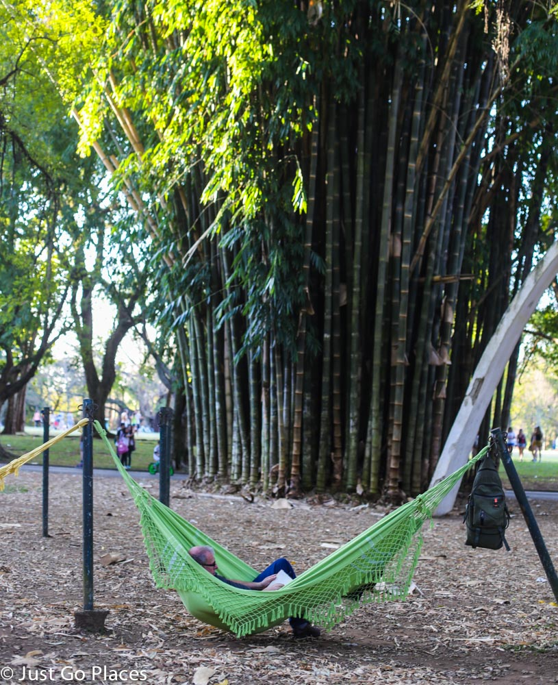 relaxing at Ibirapuera Park Brasil